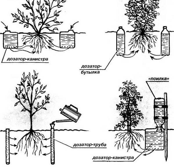 Автоматические системы полива: характеристика разновидностей и варианты самостоятельного изготовления