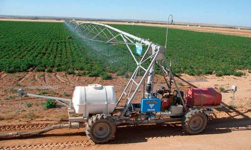 Какую систему полива выбрать для садовой теплицы?